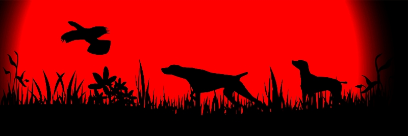 A drawing with two silhouetted Pointer dogs pointing at a bird in the sky with a dark grassy foreground and red sky.
