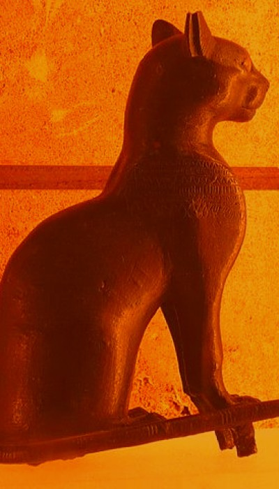 Shown above is a artistic variation of what Egyptian purebred cats may have looked like.
