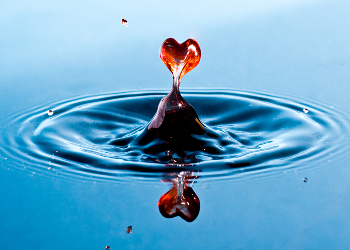 An artistic photo manipulation of a red heart forming out of a flat pond of water with its reflection below.