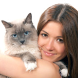 A young brunette woman is holding a Himalayan cat tightly in her arms.