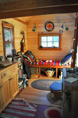 Pets in tiny houses can coexist if precautions are taken.